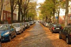 Gata, bilar, byggnader och höstsidor Arkivfoto
