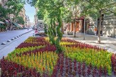Gata för Budapest Ungernträdgård royaltyfria bilder