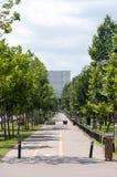 Gata från Bucharest Arkivfoton