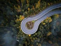 Gata från den ovannämnda ho en dimmig skog på hösten, flyget för flyg- sikt till och med molnen med dimma och träd Arkivfoton