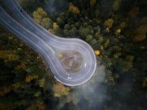 Gata från den ovannämnda ho en dimmig skog på hösten, flyget för flyg- sikt till och med molnen med dimma och träd Fotografering för Bildbyråer