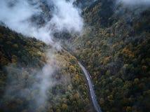 Gata från den ovannämnda ho en dimmig skog på hösten, flyget för flyg- sikt till och med molnen med dimma och träd Arkivbilder