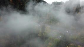 Gata från den ovannämnda ho en dimmig skog på hösten, flyget för flyg- sikt till och med molnen med dimma och träd arkivfilmer