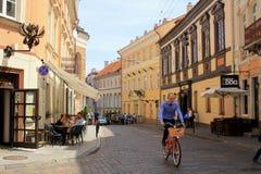 Gata i den gammala townen, Vilnius, Litauen Royaltyfria Foton