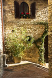 Gata i en stad från Tuscany Fotografering för Bildbyråer