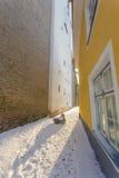 Gata i gammal del av den Tallinn staden Royaltyfri Bild