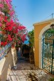 Gata i Kefalonia, Grekland Royaltyfri Foto
