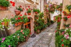 Gata i liten stad i Italien i solig dag i Umbria Royaltyfri Bild