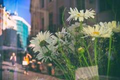 Gata i staden i reflexionen av fönstret Arkivbilder