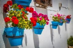 Gata med blommor i den Mijas staden, Spanien Royaltyfri Bild