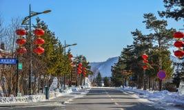 Gata p? vintern i Harbin, Kina royaltyfri foto