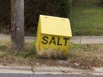 Gata-sida salt ask Royaltyfri Bild