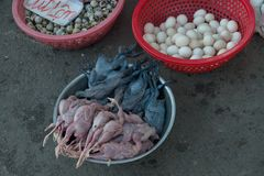Gata som säljer kött och ögon i Can Tho royaltyfri foto