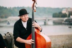 GataBusker som utför jazzsånger på Charles Bridge i Prague Arkivbilder