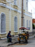 GATAFRUKTSÄLJARE, CIENFUEGOS, KUBA Royaltyfri Fotografi