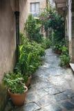 Gatagarnering med växter och blommor i den medeltida staden Siracusa royaltyfria foton