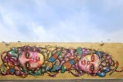 Gatakonst och väggmålningar i midtownen Miami Arkivbilder