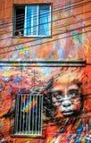 Gatakonst, Valparaiso, Chile Arkivfoto