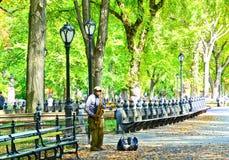 Gatakonstnär som spelar i Central Park, New York fotografering för bildbyråer