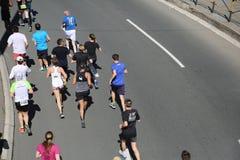 Gatalöpare på den 29th Belgrade maraton Royaltyfri Bild