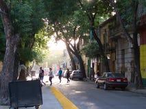 GataLa Boca - Caminito, Buenos Aires, Argentina royaltyfri foto