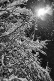 Gatalampa i snö Arkivbilder