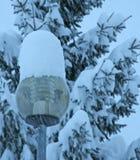 Gatalampa med exponeringsglas som täckas av ny snö Arkivbilder