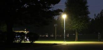 Gatalampan på natten i parkerar royaltyfria bilder