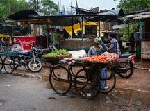 Gatamarknad i Varanasi, Indien Royaltyfria Foton