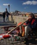 Gatamusiker på Charles Bridge i Prague, Tjeckien Royaltyfria Foton