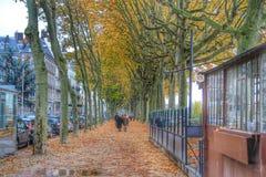 Gatan av promenad på floden rhone av Lyon, Lyon gammal stad, Frankrike Fotografering för Bildbyråer