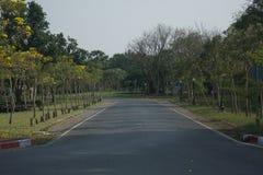 Gatan i parkera Fotografering för Bildbyråer