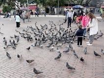 Gataplats av folk i Bogota Colombia Royaltyfri Bild