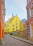 Gatasikt i den gamla staden av Tallinn i Estland Royaltyfria Bilder