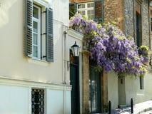 Gatasikten av hem med purpurfärgad wisteria blommar i Aten Grekland arkivfoton