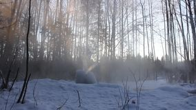 Gatchina geysers stock video