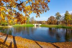 Gatchina park w jesieni ulistnieniu, Rosja zdjęcia royalty free
