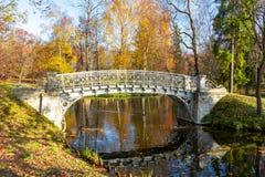 Gatchina park w jesieni ulistnieniu, Rosja obrazy royalty free