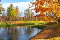 Gatchina park w jesieni ulistnieniu, Rosja obraz royalty free