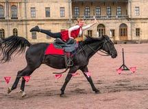 Gatchina, St Petersburg, Rússia - 30 de setembro de 2017: Mostra do cavalo dos cossacos na terra de parada do Gatchina Imagem de Stock