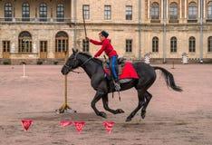 Gatchina, St Petersburg, Rusia - 30 de septiembre de 2017: Demostración del caballo de cosacos en la tierra de desfile del Gatchi Foto de archivo