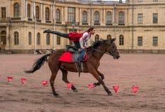Gatchina, St Petersburg, Rusia - 30 de septiembre de 2017: Demostración del caballo de cosacos en la tierra de desfile del Gatchi Fotografía de archivo
