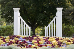 Gate. White gate by pretty flower Royalty Free Stock Images