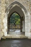 The gate Royalty Free Stock Image