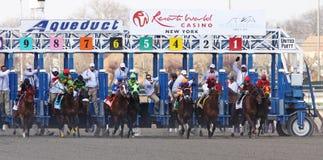 Gate Break for the 1 Million-Dollar Wood Memorial Stock Photo