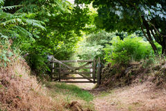 Gate in countryside Royalty Free Stock Photo