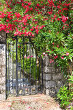 Gate into courtyard and blooming bougainvillea, Kotor, Montenegro Royalty Free Stock Photography