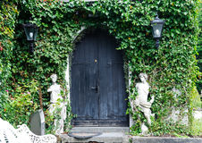 Gate covered with green leaves ivy Royalty Free Stock Photos