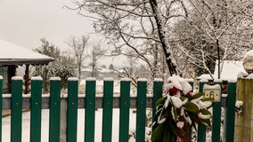 Gate covered by snow on christmas time Royalty Free Stock Image