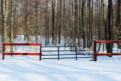 Gate Entering Woods in Winter stock image